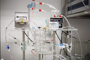 Langendorff Heart Perfusion System