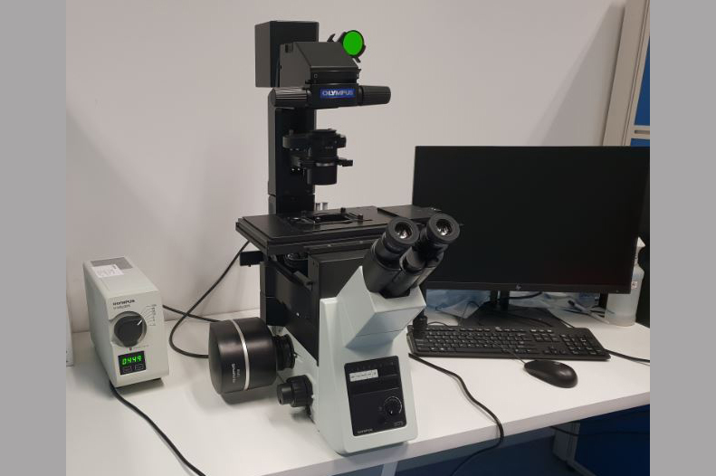 Olympus IX73 Inverted Fluorescence Microscope NHRIS-NHCS