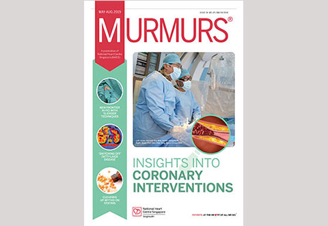 Murmurs Newsletter Issue 34 (May – Aug 2019)​